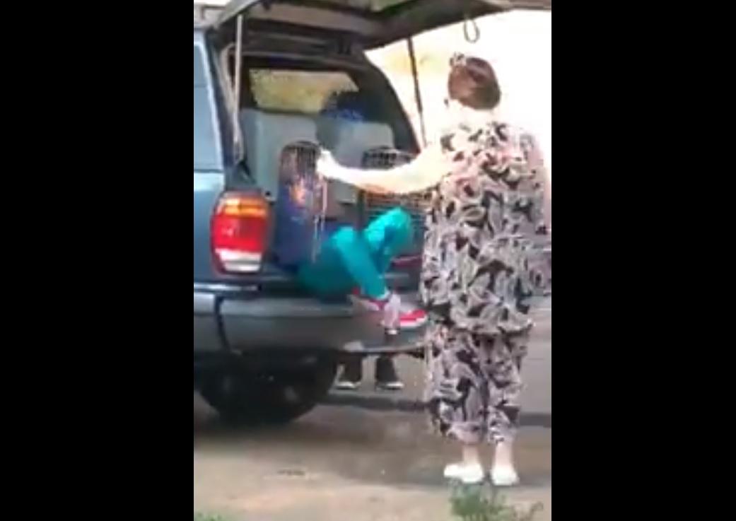 Arrestan a una mujer por transportar niños en jaulas para perros
