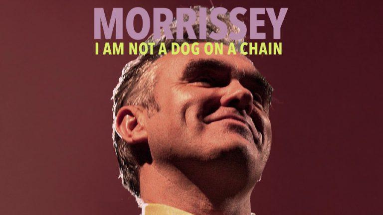 Morrissey dog web