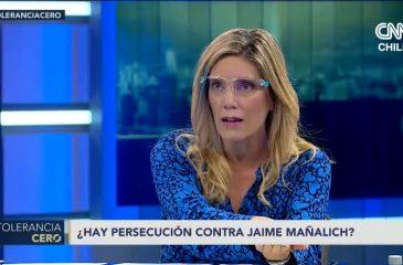Mónica rincón diputado