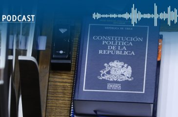 Ana María García MSOD Nueva constitución abogada constituyente