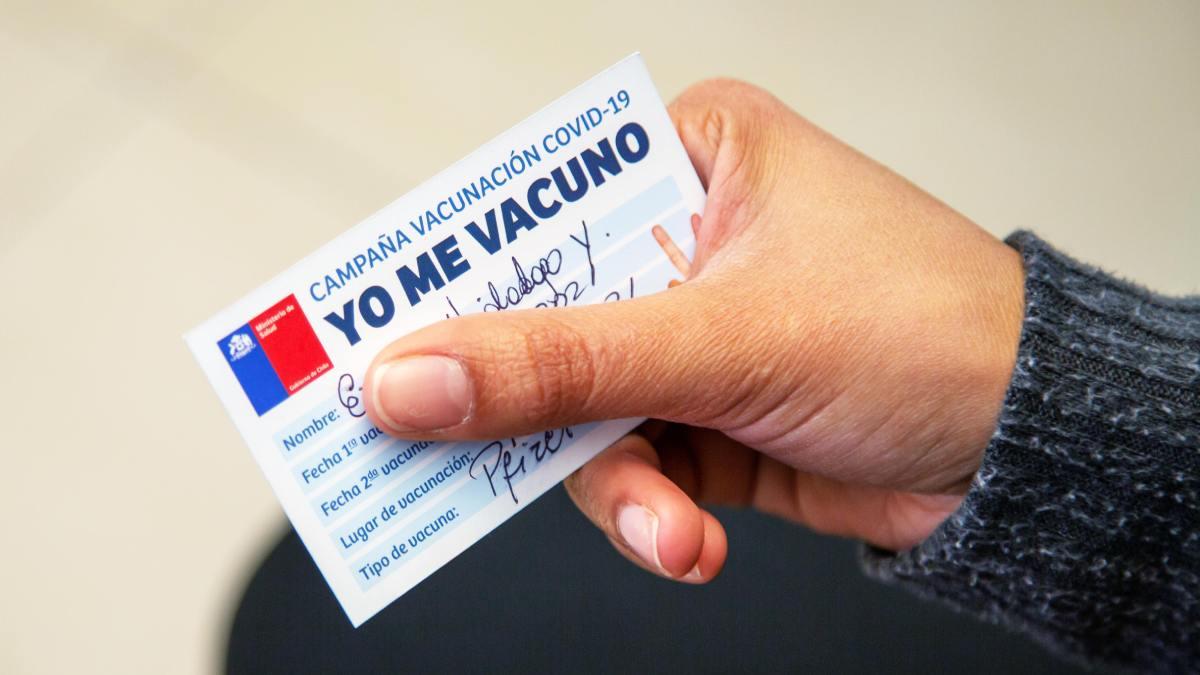 Carnet Verde Carnet De Vacunación